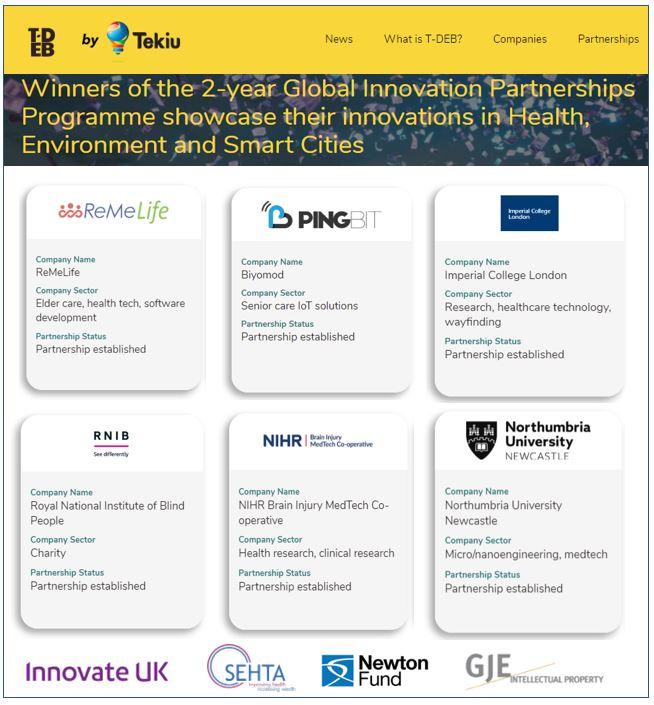 Innovate - Turkey Partnership Award